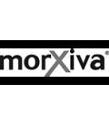 Morxiva Shoes